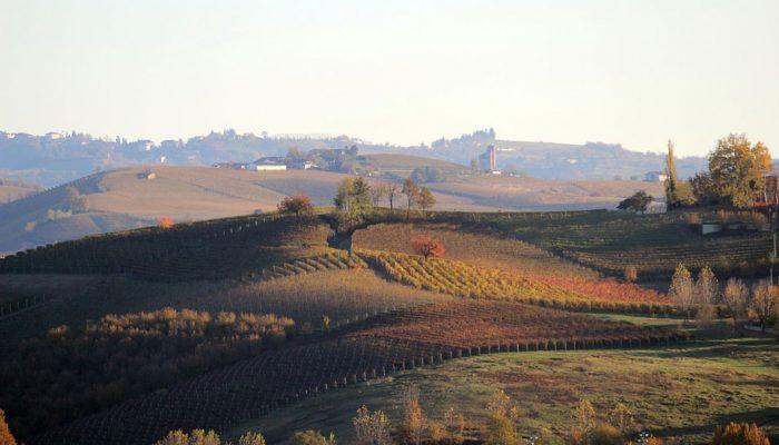 4 Location per il matrimonio: Torino e il Piemonte tra eleganza e gastronomia